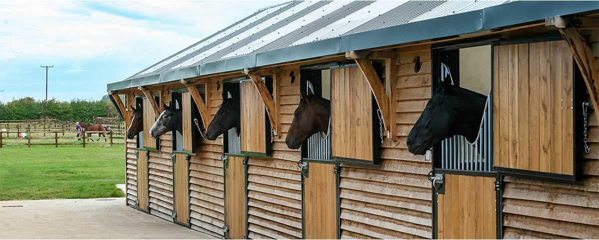 About Us - Fiddes Racing - Horse Racing, Owning & Breeding
