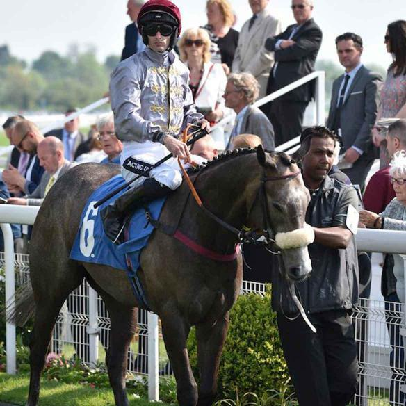 Easton Angel in the winners enclosure again