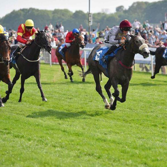 Easton Angel winning the Listed Westow Stakes at York Racecourse on the 12th of May 2016