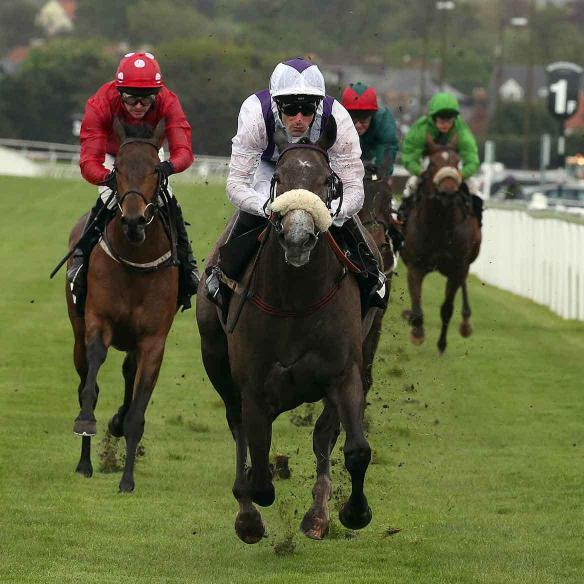 Easton Angel winning on debut at Mussleburgh on the 11th of May 2015