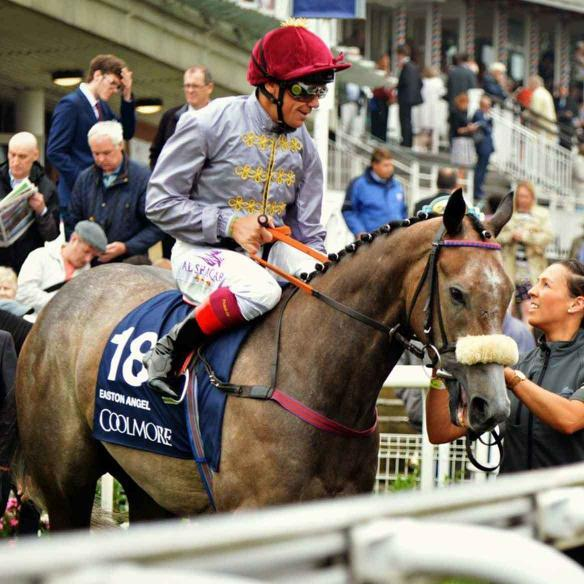 Easton Angel with Frankie Dettori before the 2016 Nunthorpe at York Racecourse