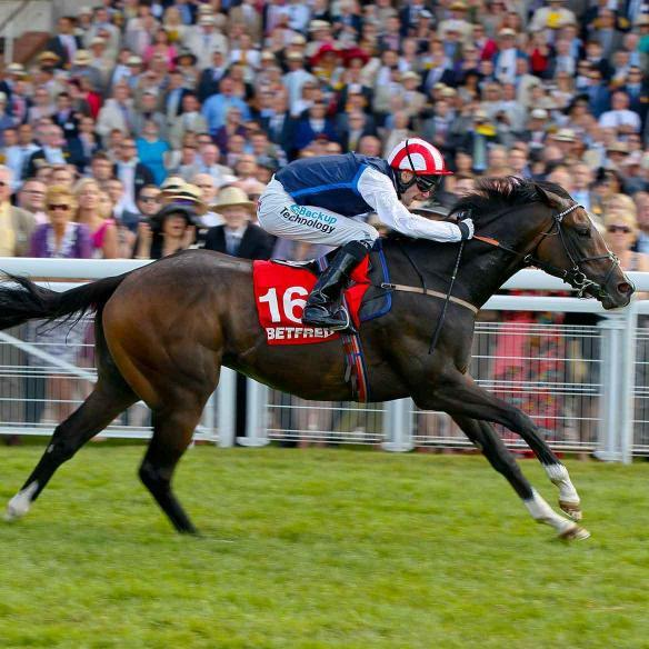 Moviesta winning the Group 2 King George at Glorious Goodwood on the 2nd of August 2013
